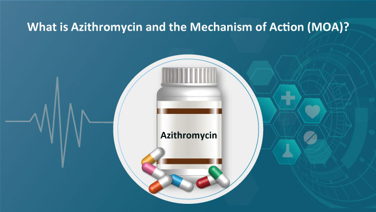 azithromycin and the Mechanism of Action