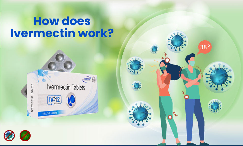 How does Ivermectin work?